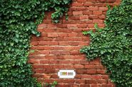 """Фон стена """"Wel"""" 2x1.5"""